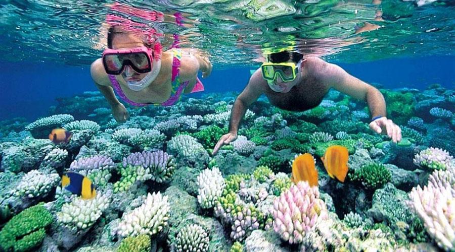 tour-boi-snorkeling